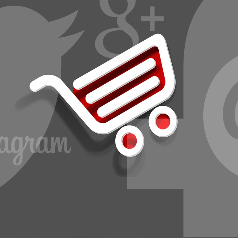 webshop social media - Website laten maken